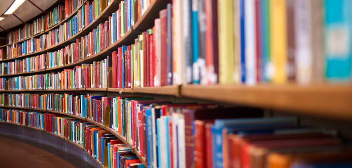 Lenormand Bücher