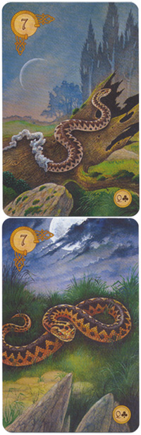 Celtic Lenormand Schlange