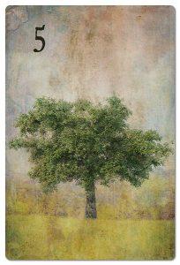 Mondnacht Lenormand Baum