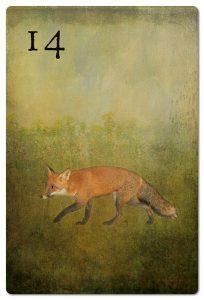 Mondnacht Lenormand Fuchs