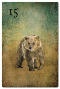 Mondnacht Lenormand Bär