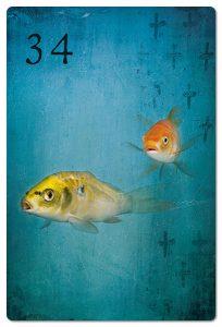 Mondnacht Lenormand Fische