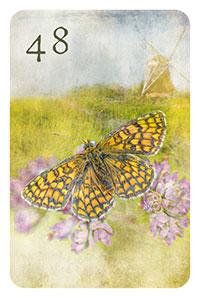 48 - der Schmetterling